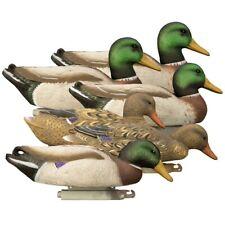 Higdon Magnum Foam Filled Mallard Duck Decoys 6 Pack