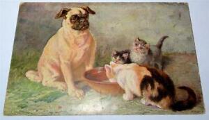 ANTIQUE PUG & KITTENS CHRISTMAS POSTCARD c 1904 HILDESHEIMER UNUSED  876
