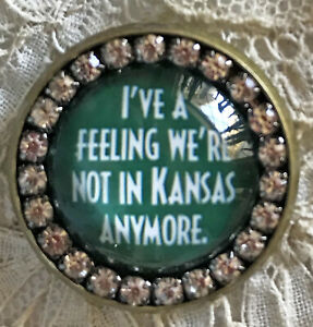 WE'RE NOT IN KANSAS Glass Rhinestone BROOCH Lapel Scatter Pin Wizard of Oz Toto
