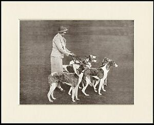 GREYHOUND LADY AND HER DOGS LOVELY DOG PRINT MOUNTED READY TO FRAME