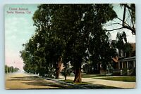 Santa Monica, CA - EARLY 1900s OCEAN AVE STREET SCENE - UNUSED POSTCARD