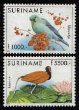 Surinam / Suriname 1999 Vogel bird vogel oiseau pigeon MNH