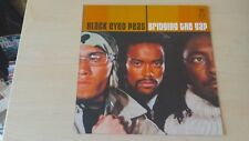 BLACK Eyed Peas – Bridging the Gap 2 LP