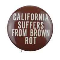 California Suffers From Brown Rot Political Campaign Pin Button Pinback