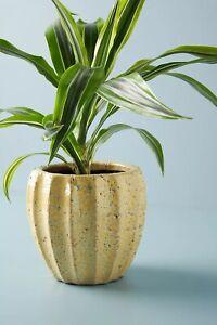 ANTHROPOLOGIE Yellow Glaze Crackled TerraCotta Sonny Pot Sunny Medium Planter