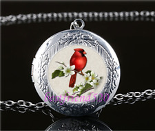 Northern Cardinal Photo Glass Tibet Silver Chain Locket Pendant Necklace#T28