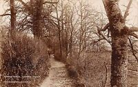 POSTCARD   DEVON    BARNSTAPLE    Lovers   Grove   RP