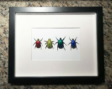 Scarab beetle collection rainbow colors Insect framed art