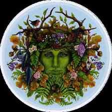 Seasons Green Man - Bumper Sticker / Decal