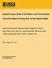 Deepwater Program: Studies of Gulf of Mexico Lower Continental Slope...