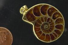 BUTW Gold Electroformrd Ammonite nautiloid fossil pendant necklace jewelry 7159P