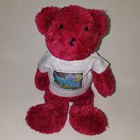 Greetings From Nevada T-Shirt Teddy Bear Stamp Plush USPS Stuffed Animal Toy
