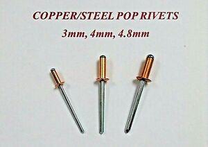 Copper Steel Open Blind Standard Pop Rivets Choose Your Size