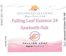 Falling Leaf Essence #24 Flow - Advanced Alchemy 25ml Sawtooth Oak