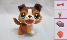 Littlest Pet Shop Dog Puppy  237 and Free Accessory Authentic Lps