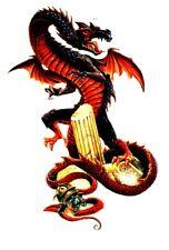 Temporary Tattoo, Dragon Tattoo, AGD234 03-12, Drache mit Totenkopf