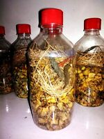 Herbal Hair Oil Mix x2 - Amazing Blend of  INDIAN Herbs, for Long and Thick Hair