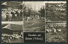 Groeten uit Laren ('t Gooi)