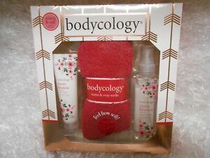 💕 New bodycology Cherry Blossom fragrance mist, body cream, & cozy socks set
