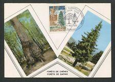 FRANCE MK 1968 FLORA WALD FOREST TREE BAUM BÄUME CARTE MAXIMUM CARD MC CM d8818