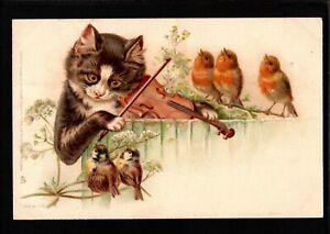 ANTHROPOMORPHIC CAT PLAYS VIOLIN FOR SINGING BIRDS Raphael Tuck PC E20C - Ca168