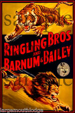 RINGLING BROS CIRCUS LION TIGER BUILDING SIGN DECAL 3X2  MORE SIZES AVAIL