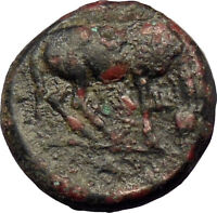 Larissa in Thessaly 360BC Ancient Greek Coin Nymph Horse  i29027