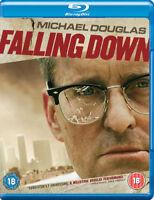 Falling Down DVD (2009) Michael Douglas, Schumacher (DIR) cert 18 ***NEW***