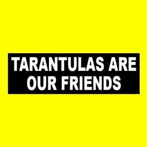 "Funny ""TARANTULAS ARE OUR FRIENDS"" spider decal BUMPER STICKER pet, creepy, new"