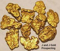10 California Gold Nuggets *BONUS* FREE 1oz. PROSPECTOR COLLECTOR COIN  *BONUS*