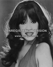 "Ronnie Spector 10"" x 8"" Photograph no 1"