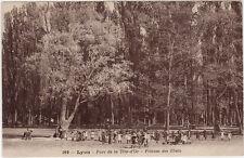 CPA -69-  LYON - Parc de la Tête d'Or - Pelouse des Ebats.
