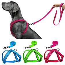 No Pull Small Large Dog Harness and Leash Adjustable Reflective Mesh Padded S-XL