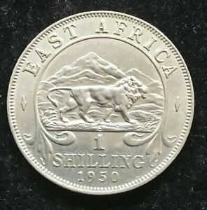 EAST AFRICA 1 SHILLING 1950 - GEORGE VI A HIGH GRADE COIN