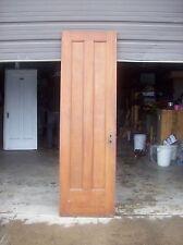 narrow vertical panel door (D L)