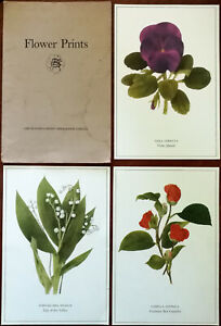 Readers Digest Flower Prints Set of 3 Viola, Red Camellia & Lily of the Valley
