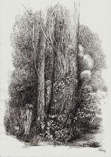 """""""Der dunkle Baum"""", Tuschezeichnung, Original"""