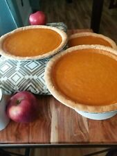 Southern Style 9 Inch Sweet Potato Pie..Can be made Gluten and dairy free.🙂