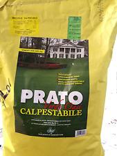 Semi sementi prato verde oasi semi erba tappeti erbosi 10kg BLUMEN giardino casa