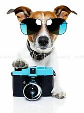 JACK RUSSELL DOG SHADES CAMERA PHOTOGRAPHER ART PRINT POSTER PICTURE BMP2034A