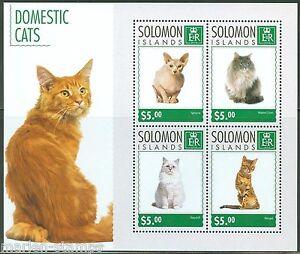SOLOMON ISLANDS  2014 DOMESTIC CATS  SHEET MINT NH