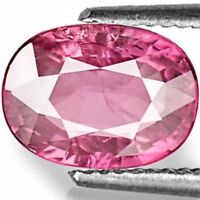 IGI Certified MOZAMBIQUE Pink Sapphire 1.70 Cts Natural Untreated Oval