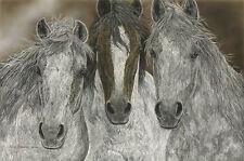 Judy Larson THE MISFITS print Palouse Horses #998/1000