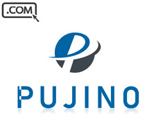 PUJINO .com - Brandable Domain Name for sale - STARTUP BRAND DOMAIN NAME
