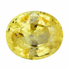 Good Cut Oval Yellow Loose Sapphires