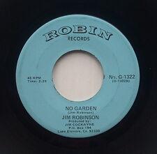 Scarce Country 45 - Jim Robinson - No Garden & Don't Look Now - Robin 1322