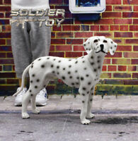 """Free Shipping 1/6 Scale Dalmatian Dog Model Animal for 12"""" Action Figure Soldier"""