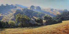 "David Kreitzer Contemporary Realist Oil Painting-""Dry Hills Low Sun 24""x48"""