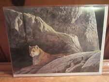 Rocky Wilderness - Cougar by Robert Bateman Art Print Wildlife Notecard Envelope