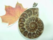 40 mm Ammonit Fossilien Naturstein Ketten Anhänger 40 x 33 mm mit Edelstahl Öse